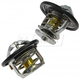 ACEEK00031-Thermostat Pair  ACDelco 131-131  131-163