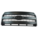 FDBGR00025-2015-16 Ford F150 Truck Grille