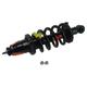 MNSTS00635-2003-11 Honda Element Strut & Spring Assembly