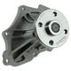 ACEWP00038-Engine Water Pump  ACDelco 252-856