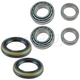 1ASHS00993-Jeep Grand Cherokee Liberty Wheel Bearing & Seal Kit Pair