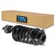 1ASTS01251-Strut & Spring Assembly  TRQ SCA57752
