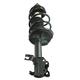 1ASTS01314-2000-01 Nissan Sentra Strut & Spring Assembly