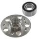 1ASHS01091-Mercedes Benz Wheel Bearing & Hub Kit