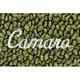 ZAMAF00144-1967-69 Chevy Camaro Floor Mat 14-Moss Green  Auto Custom Carpets 10293-203-1232173100