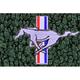 ZAMAF00115-1964-68 Ford Mustang Floor Mat 08-Dark Green  Auto Custom Carpets 19503-203-1226114000