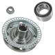 1ASHS01141-Volkswagen Wheel Bearing & Hub Kit