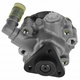 1ASPP00010-BMW Power Steering Pump