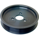 1ASPP00039-BMW Power Steering Pump Pulley