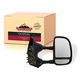 1AMRE00381-Ford Mirror