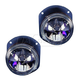 1ALFP00310-Mercedes Benz Fog / Driving Light Pair