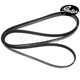 GAESB00001-Dodge Serpentine Belt Gates K070975