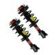 MNSSP00016-Strut & Spring Assembly Pair