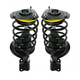 MNSSP00035-Strut & Spring Assembly Pair
