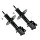 MNSSP00406-Strut Assembly Front Pair
