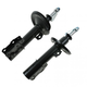 1ASSP00326-Strut Assembly Pair
