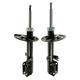 1ASSP00309-Strut Rear Pair