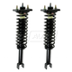 1ASSP00428-Strut & Spring Assembly Pair