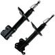 1ASSP00138-Strut Assembly Front Pair