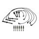 1AETK00024-Mazda 626 Millenia MX-6 Spark Plugs & Ignition Wires Kit