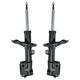 1ASSP00266-Strut Assembly Front Pair
