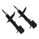 1ASSP00291-Strut Assembly Rear Pair