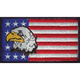 1ACPL00148-US Flag with Eagle Logo
