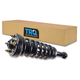 1ASTS00853-Ford F150 Truck Strut & Spring Assembly