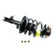 MNSTS00020-Toyota Camry Solara Strut & Spring Assembly