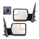 1AMRP01123-Ford F150 Truck Mirror Pair