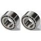 1ASHS00263-Wheel Bearing Pair Front