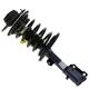 MNSTS00181-Strut Assembly