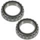 1ASHS00747-Differential Bearing Rear Pair