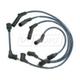 1AESW00004-Spark Plug Wire Set
