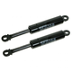 1ALSP00107-Chevy Corvette Hood Lift Support Pair
