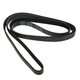 1AESB00061-Serpentine Belt