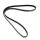 1AESB00063-Serpentine Belt
