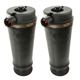 ARSSP00013-Air Spring Rear Pair Arnott A-2153