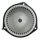 1AHCX00066-Heater Blower Motor with Fan Cage