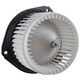 1AHCX00074-Heater Blower Motor with Fan Cage