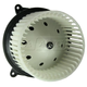 1AHCX00251-2004-07 Heater Blower Motor with Fan Cage