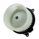 1AHCX00228-Heater Blower Motor with Fan Cage FRONT