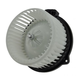 1AHCX00317-Heater Blower Motor with Fan Cage Front