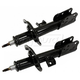MNSSP00782-Strut Assembly Pair
