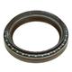 FDEGS00002-Crankshaft Seal  Ford OEM XW4Z6700AA