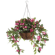 Fully Assembled Impatiens Hanging Basket