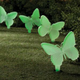 Glow in the Dark Butterfly Stakes Set of 4