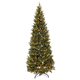 7' Pre-Lit Noble Spruce Tree by Holiday PeakTM