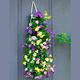 Bag O'Blooms Shade Loving Pansies
