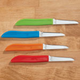 Colorful Paring Knives - Set of 4